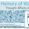 The Memory of Water – Thought Affects All Life